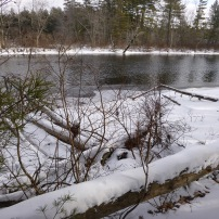 Sebago Lake State Park Winter