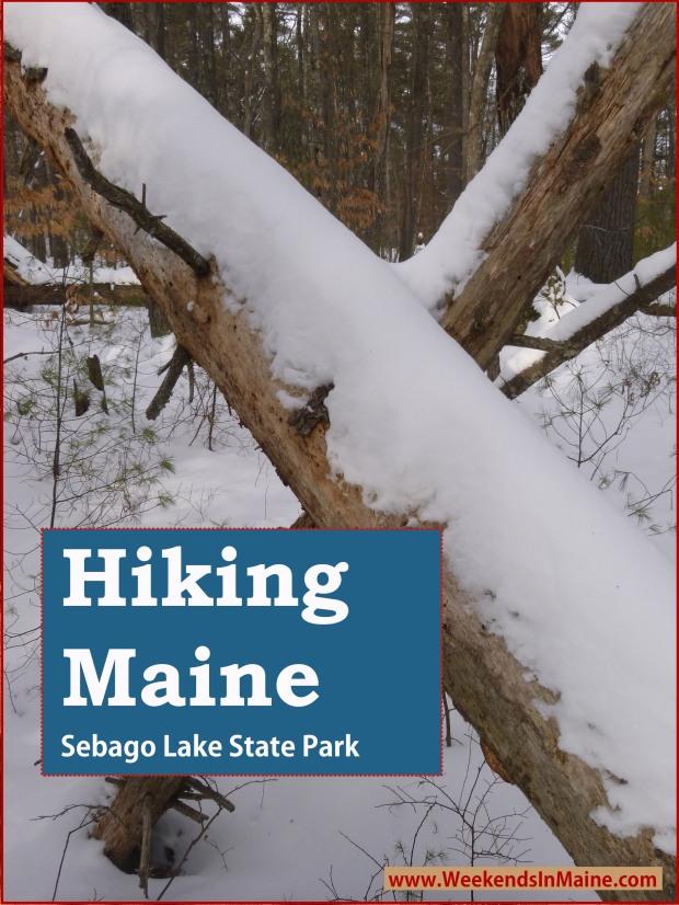 Sebago State Park | Sebago, Maine