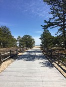 Ferry Beach Saco Loop (15)