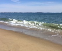 Ferry Beach Saco Loop (19)