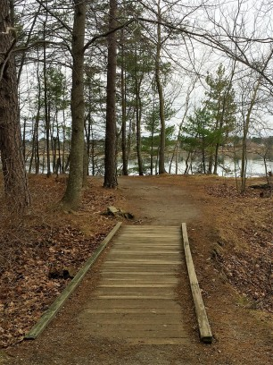 Mackworth Island, Falmouth (14)