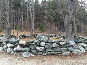 Mackworth Island, Falmouth (9)
