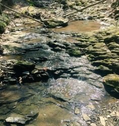 Presumpscot Trail