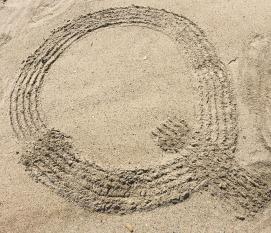 Quahog Digging (2)