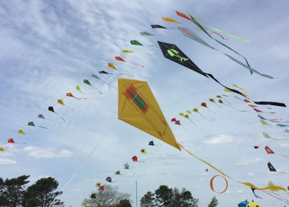Bug Light Park Kite Festival