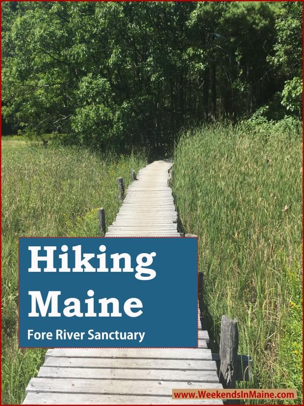 Fore River Sanctuary & Jewell Falls | Portland, Maine