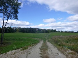 pineland-farm-10