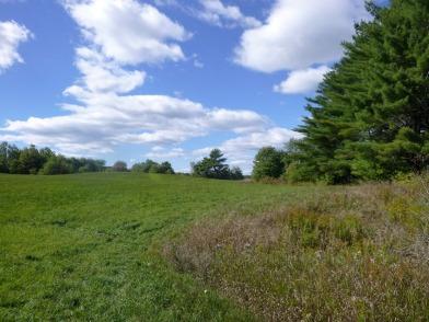 pineland-farm-5