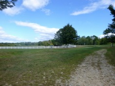 pineland-farm-7