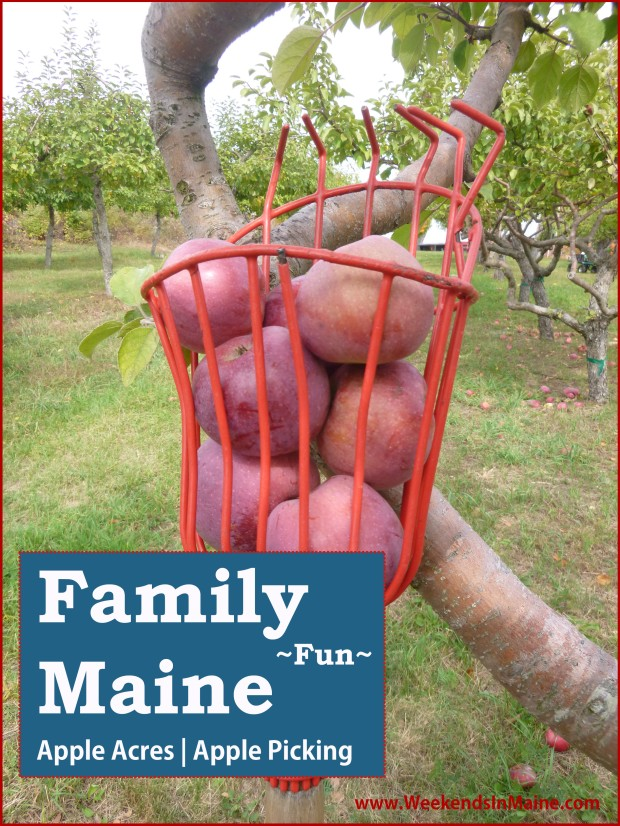 Apple Acres Farm | Apple Picking