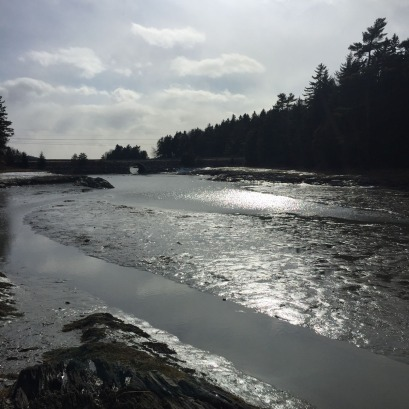 Harpswell Cliff Trail (1)