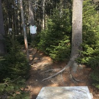 Harpswell Cliff Trail (3)