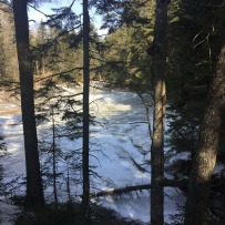 Harpswell Cliff Trail (4)