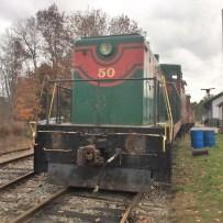 Belfast Rail Trail (8)