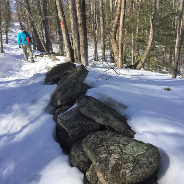 Bradbury Mountain (2)