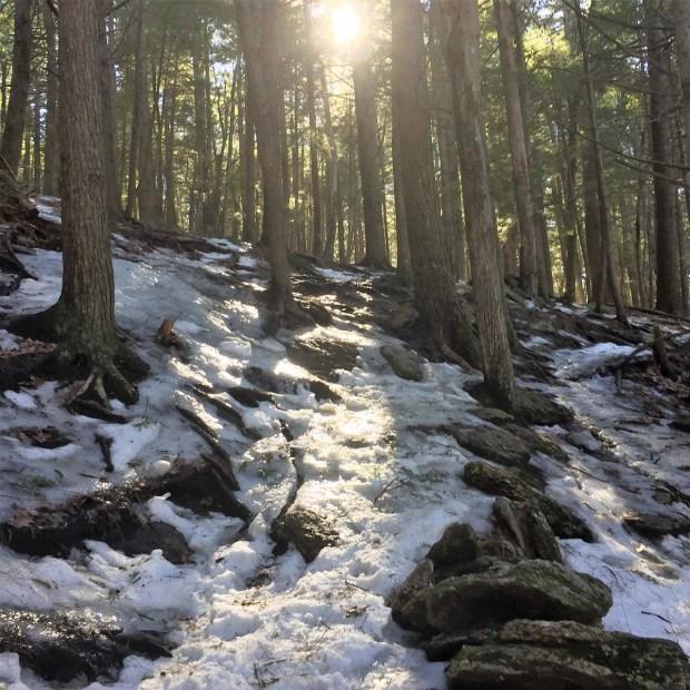 Bradbury Mountain (5)