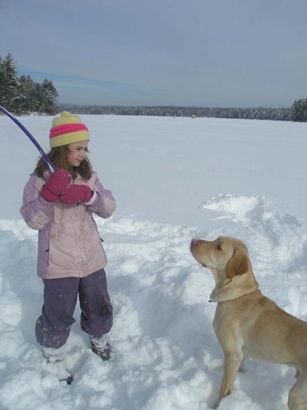 darcy-snowballs-10-e1521764529177.jpg