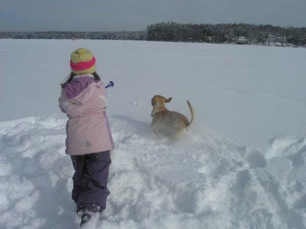 Darcy Snowballs (7)