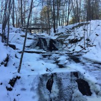 Fore River Sanctuary (4)
