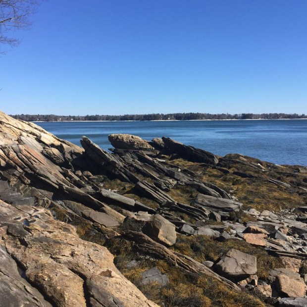 Wolfe's Neck State Park (1)