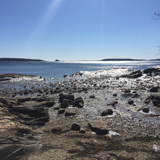 Wolfe's Neck State Park (2)