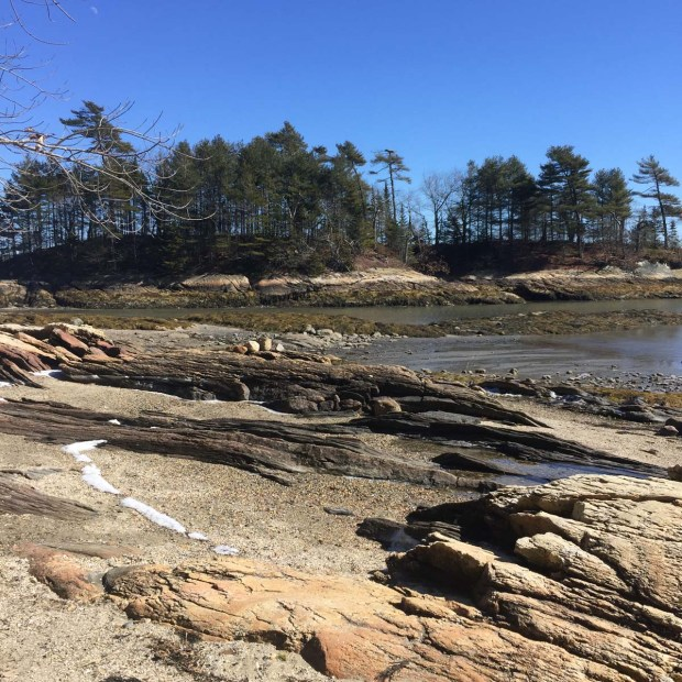 Wolfe's Neck State Park (3)