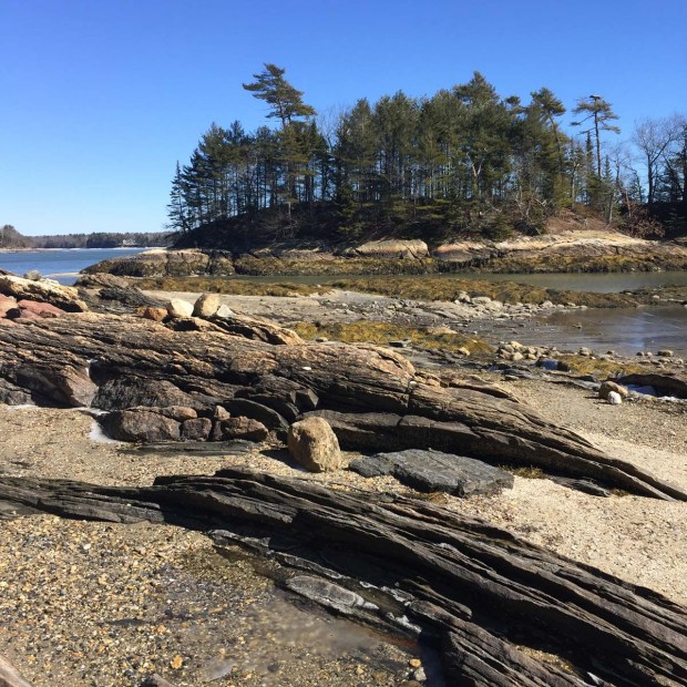 Wolfe's Neck State Park (6)