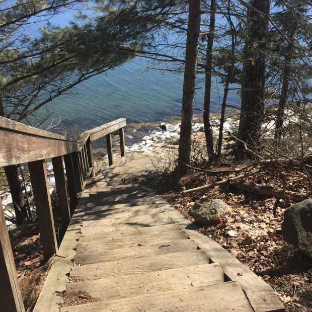 Wolfe's Neck State Park (7)