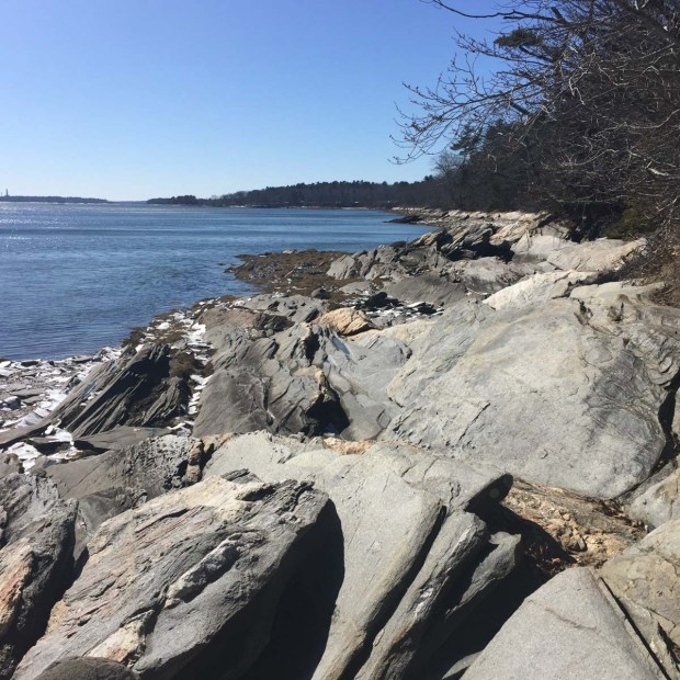 Wolfe's Neck State Park (8)