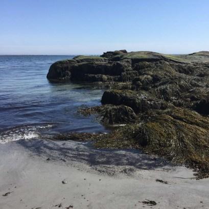 Goose Rocks Beach (1)