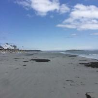 Goose Rocks Beach (4)