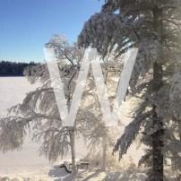 W is for Walking in a Winter Wonderland