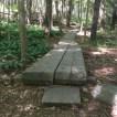 Hiking (4)