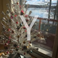 Y is for Yuletide and always having room for one more tree.